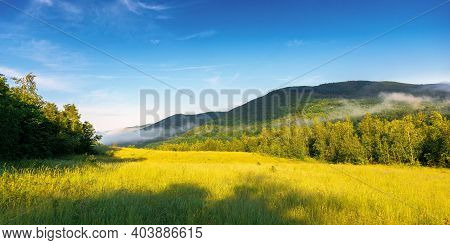 Grassy Meadow In Mountains. Fog Rolling Through The Valley Above The Distant Forest. Beautiful Rural
