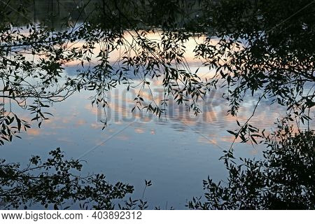 Evening Reflection In The River Moselle In France