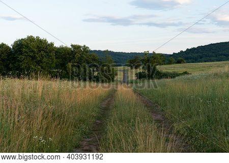 Dirt Road In A Grassland
