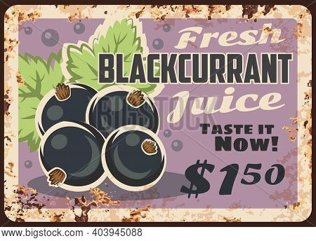 Blackcurrant Juice Rusty Metal Plate, Vector Fresh Berry Beverage Vintage Rust Tin Sign. Price Tag F