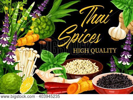 Thai And Herbs Vector Design Of Asian Cuisine Food Seasonings And Condiments. Kaffir Lime, Ginger, L