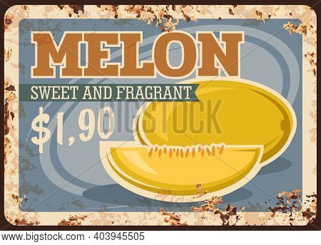 Melon Rusty Metal Plate, Vector Vintage Rust Tin Sign With Ripe Sweet And Fragrant Orchard Fruit Pro