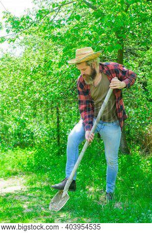 Gardening. Gardener Work. Man With Shovel. Man Working In Garden. Happy Bearded Man In Garden. Garde