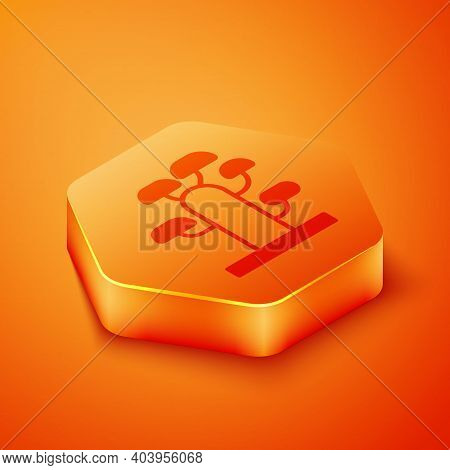 Isometric African Tree Icon Isolated On Orange Background. Baobab, Acacia And Other. Orange Hexagon