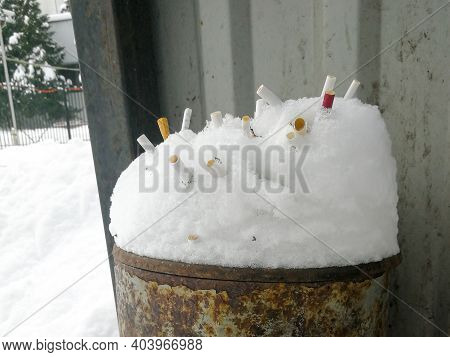 Many Cigarette Butts Stick Out In The Snow In The Trash Can. The Butts Are Like A Hedgehog. The Conc