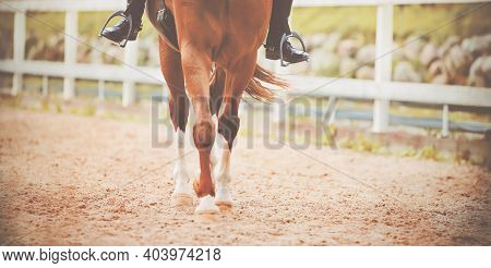 The Hooves Of A Sorrel Horse With A Rider In The Saddle Step On The Sand On An Open Outdoor On A Sum