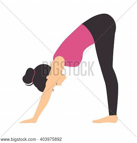 Girl Doing Yoga Stretching Exercise, Slim Sporty Young Woman Practicing Downward Facing Dog Yoga Pos
