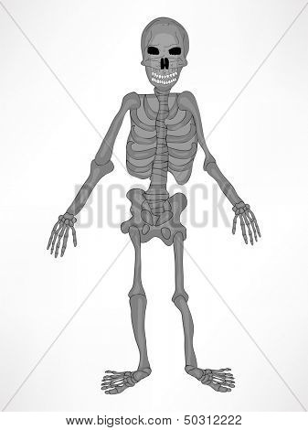 Poster, banner or flyer for Halloween party night with illustration of human skeleton on abstract grey background.  poster