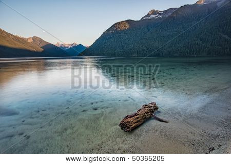 Log In A Clear Turquoise Lake