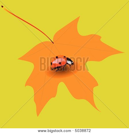Insect On Yellow Leaf