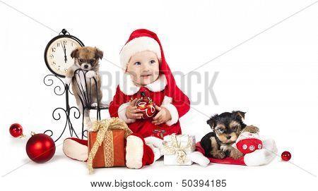 baby  wearing a santa hat and dog