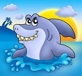 Cartoon blue shark with sunset - color illustration. poster