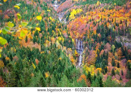 Autumn Bujaruelo Ordesa waterfal in colorful fall forest Pyrenees Aragon Huesca Spain