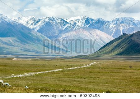 Dirt road in majestic Tien Shan mountains