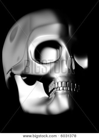Perspective View Of Chrome Skull