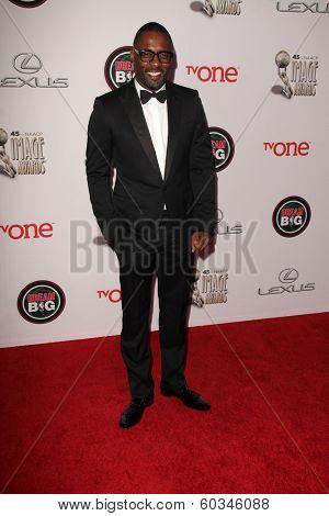LOS ANGELES - FEB 22:  Idris Elba at the 45th NAACP Image Awards Arrivals at Pasadena Civic Auditorium on February 22, 2014 in Pasadena, CA