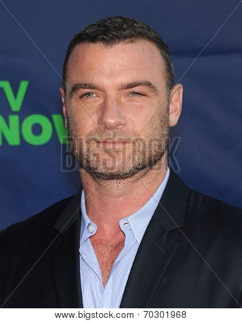 LOS ANGELES - JUL 17:  Liev Schreiber arrives to the CBS-CW-Showtime Summer TCA Press Tour 2014  on July7, 2014 in West Hollywood, CA.