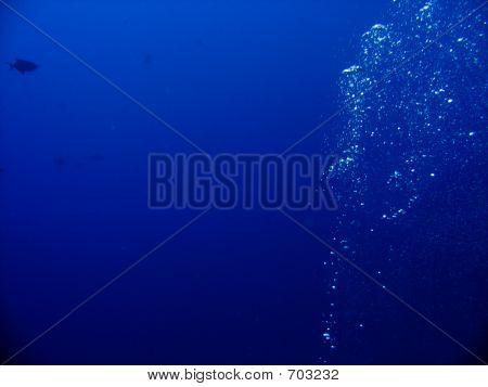 Deep Blue Bubbles