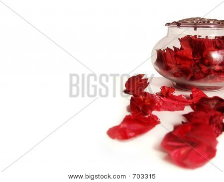 Feels Of Red Flowers Petals