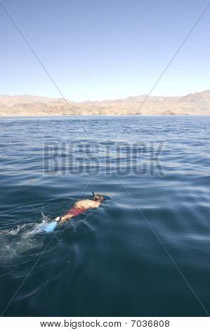 Swimmer snorkeling in ocean
