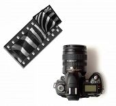 Modern digital slr camera or slide film camera with wildlife zebra images poster