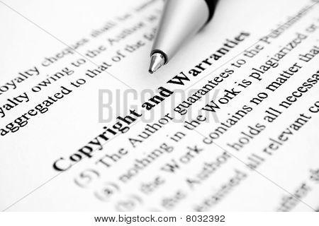 Copyright and warranties