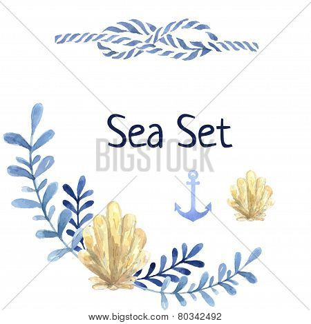 Hand drawn watercolor sea set. With water plant and shell anchor. Blue natural colors