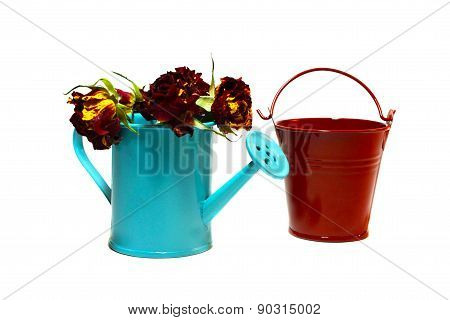 Bucket And Garden Handshower  With Roses Inside On A White Background