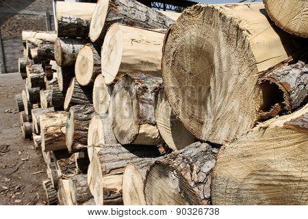 Lumbers 04