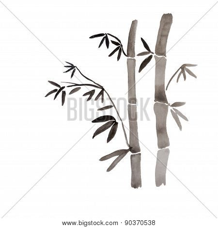 Bamboo branches isolated on the white background.