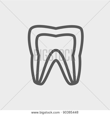 Molar tooth icon thin line for web and mobile, modern minimalistic flat design. Vector dark grey icon on light grey background.