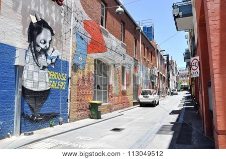 Alleyway Murals in Perth, Australia