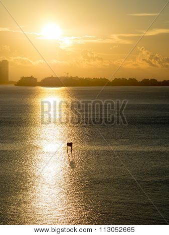The beautiful sunrise in Brickell key, Miami