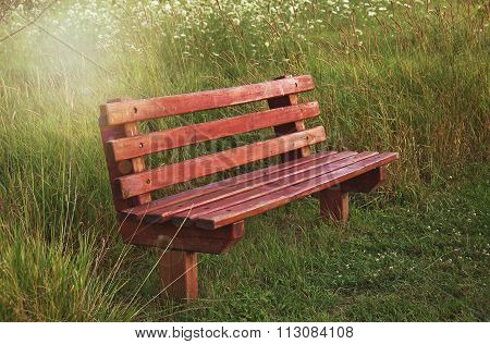 vacant bench in sunshine