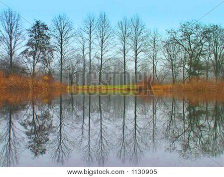 Water Treeline