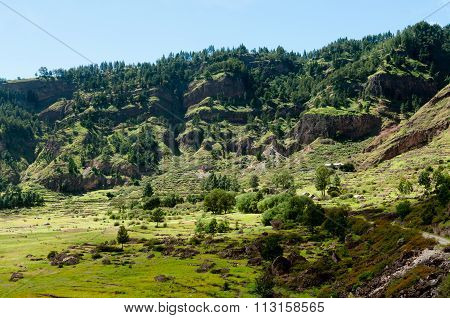 Green humid farm field in canyon of volcano Cape verde