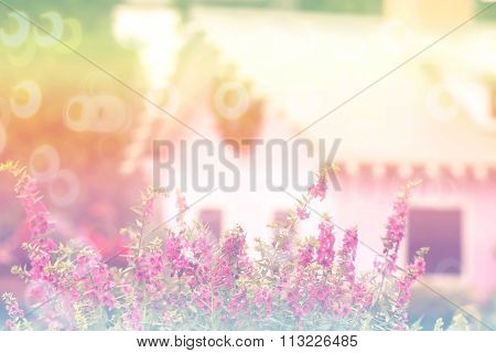 sweet dreamy pink flowers in garden with little vintage houses soft focus