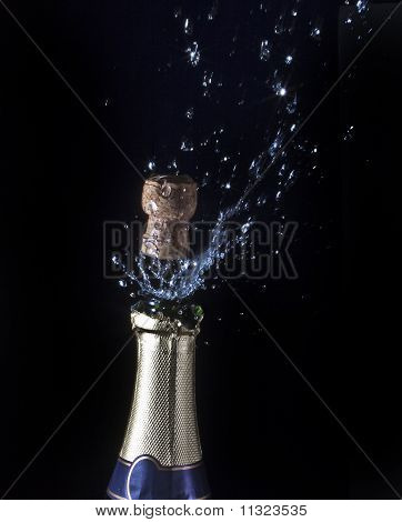 Bottle of champagne and cork