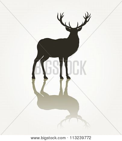 Deer animal silhouette