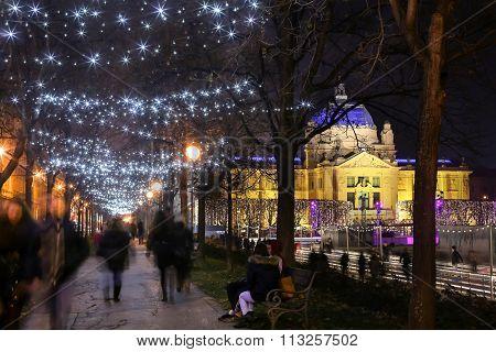 Illuminated Tree Alley In Zagreb