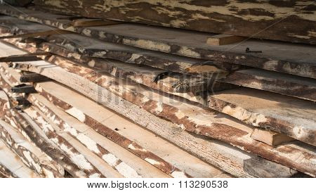 Pile Of Raw Planks