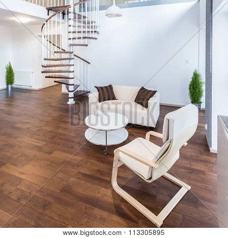 Elegant apartment with stairs