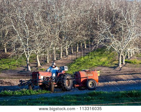 Farm worker operates a tractor