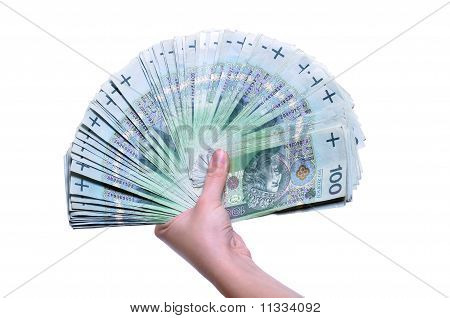 Polish Banknotes In Hand (pln) Isolated On White Background