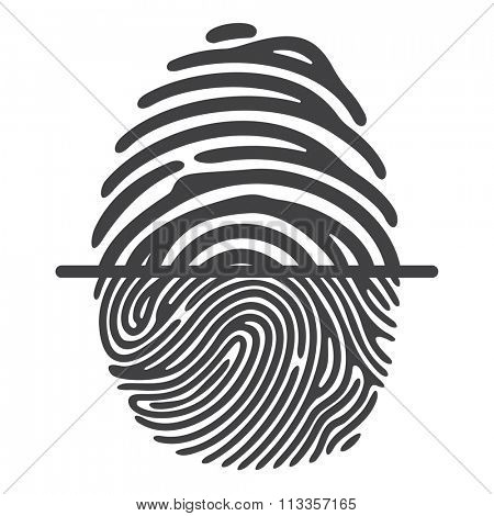 Black fingerprint isolated on white background. Elements of identification systems, security conception, apps icons
