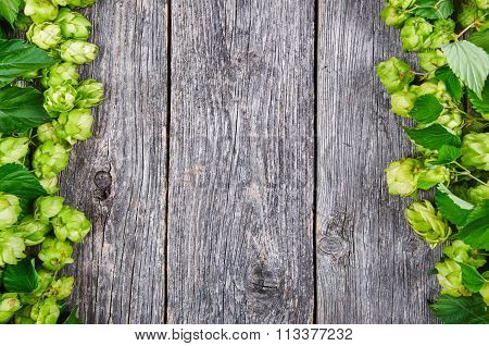 Wooden Background With Fresh Green Hop Frame