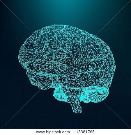 Vector illustration human brain. The structural grid of polygons. Abstract Creative concept vector b
