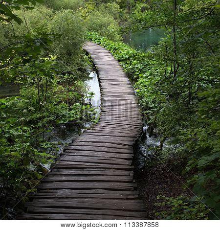 Wooden Walkway Across Lake