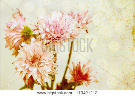 Antique textured flowers.
