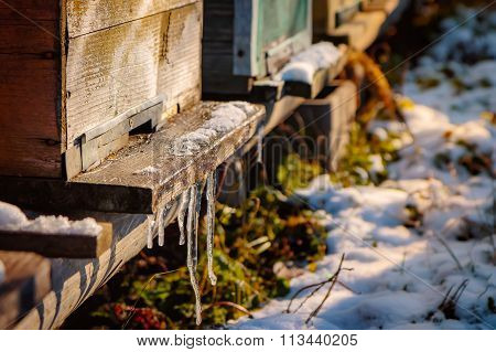 Bee Hives With Icicles On The Landing Board, With Snow On The Ground In The Winter